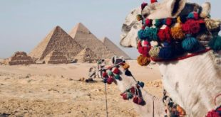 Holiday Vacation Season: Best Ways to Experience Egypt as a Family | Travel Expe...