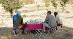 Kenya travel tips - know before you go
