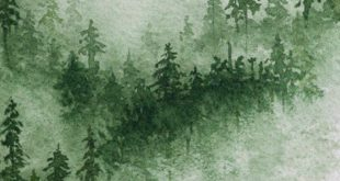 Misty forest watercolor print. Gallery wrapped canvas print of wintry green and white foggy mountain pine tree painting. Christmas art decor