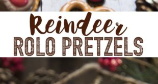 Rolo Pretzel Reindeer are not only a delicious sweet and salty treat, but they a...